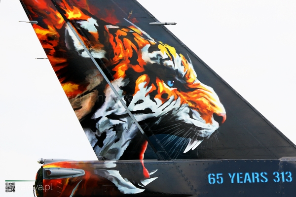 naleva-epks-nato-tiger-meet-2018 (47)