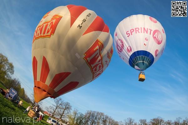 BaloonFestival2016 (31)