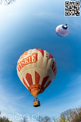 BaloonFestival2016 (59)